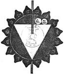 vishuda